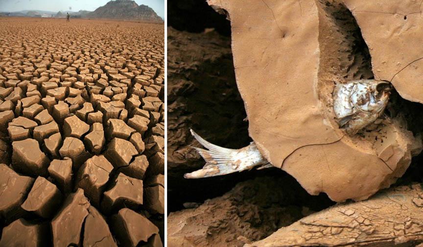 http://cellar.org/2010/drought.jpg