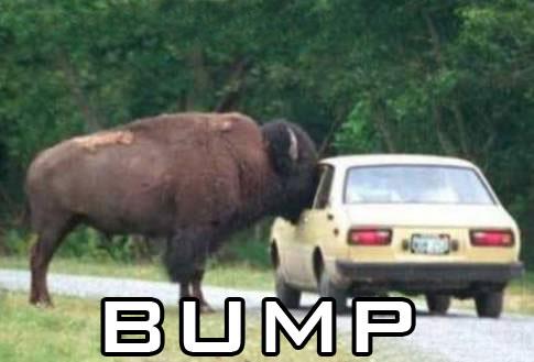 bump3.jpg