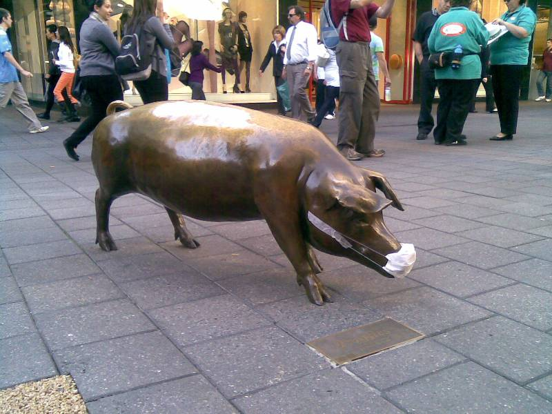 Masked pig - Augusta, Rundle Mall - Adelaide