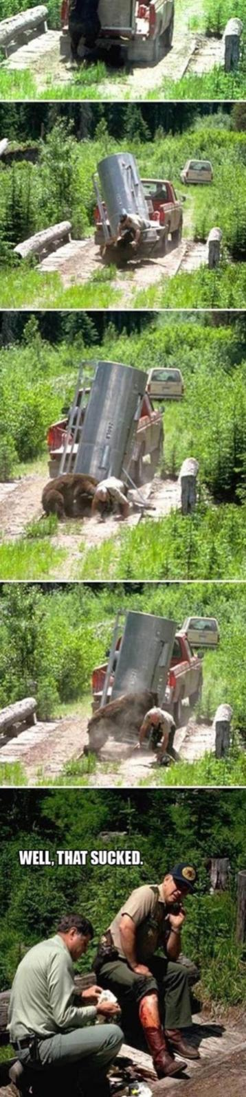 Name:  Release_The_Bear2.jpg Views: 546 Size:  119.6 KB