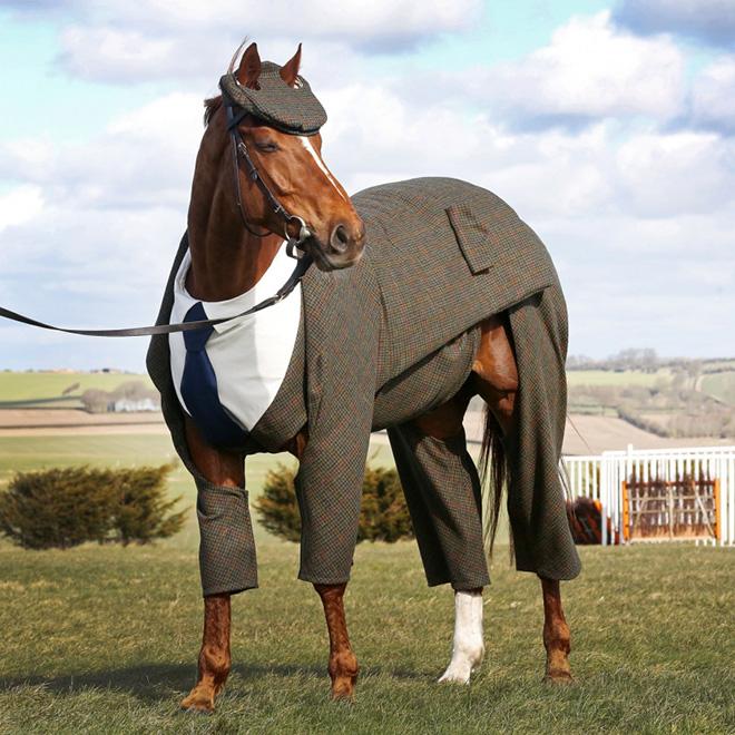 Name:  suit1.jpg Views: 141 Size:  180.7 KB