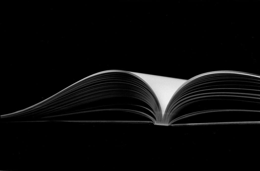 Name:  scriveyn_book.jpg Views: 88 Size:  28.7 KB