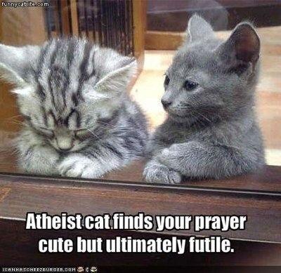 Name:  To pray or not to pray..jpg Views: 713 Size:  65.7 KB
