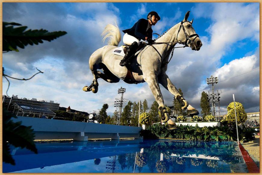 Name:  horsejump.JPG Views: 191 Size:  103.7 KB