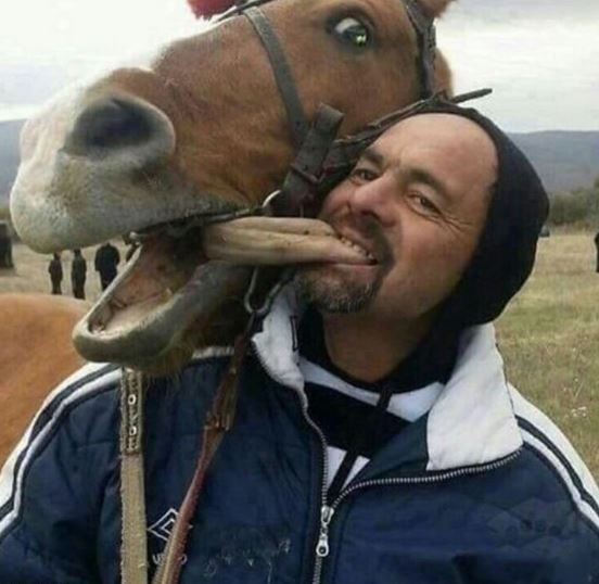 Name:  horsetongue.JPG Views: 128 Size:  47.6 KB