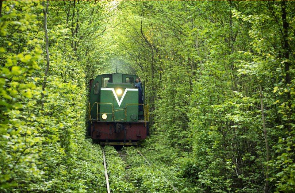 Name:  train.jpg Views: 192 Size:  162.6 KB