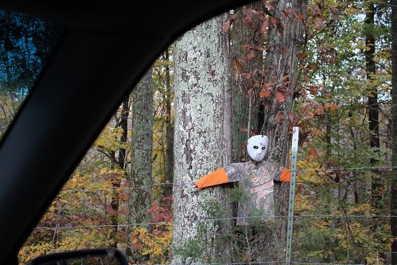 Name:  halloween.jpg Views: 260 Size:  191.6 KB