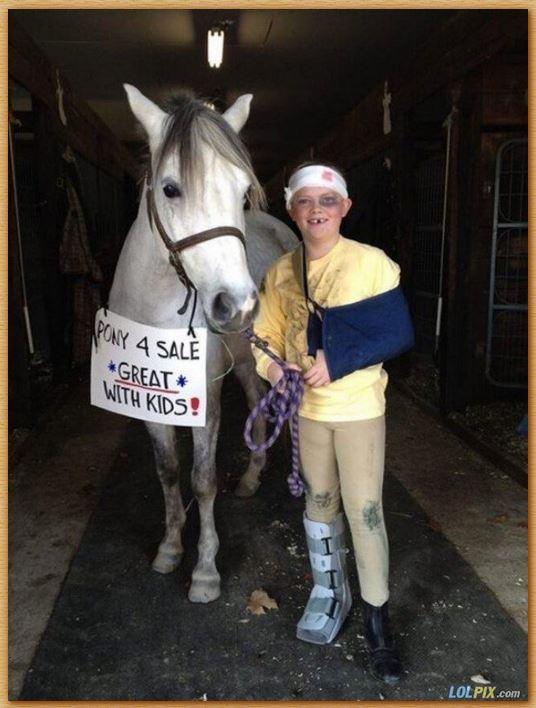 Name:  pony4sale.JPG Views: 199 Size:  63.8 KB