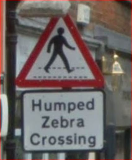 Name:  Humped Zebra.JPG