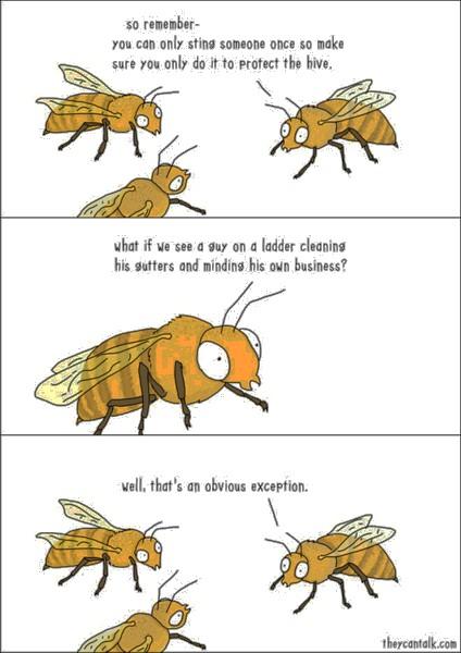 Name:  bee-logic.jpg Views: 191 Size:  59.5 KB