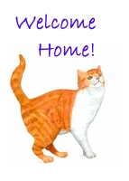 Name:  gingercat2welcomehome200.jpg Views: 576 Size:  19.6 KB
