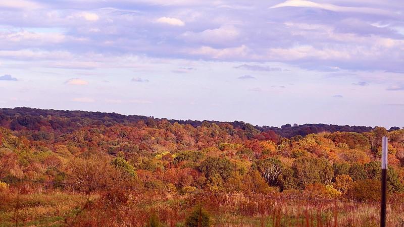 Name:  fall.jpg Views: 27 Size:  133.1 KB
