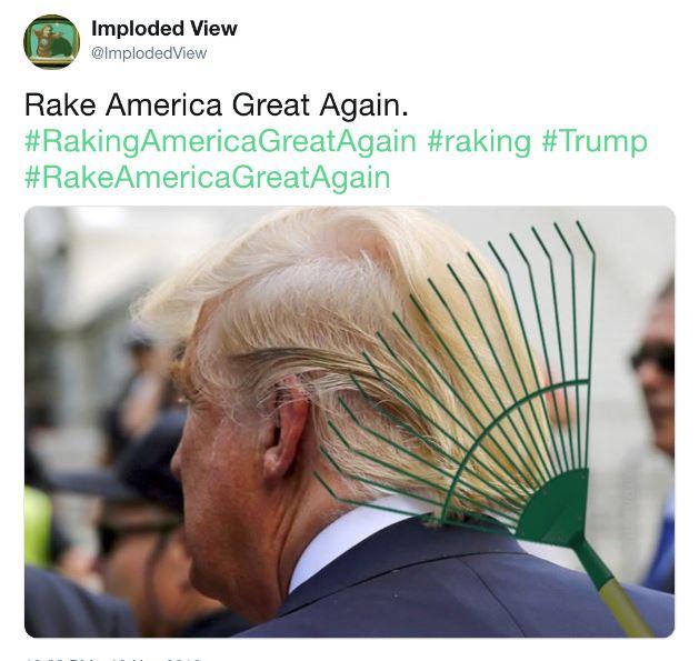 Name:  rake.JPG Views: 140 Size:  60.5 KB