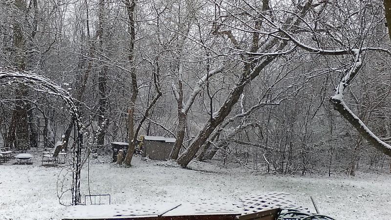Name:  april snow.jpg Views: 75 Size:  295.6 KB