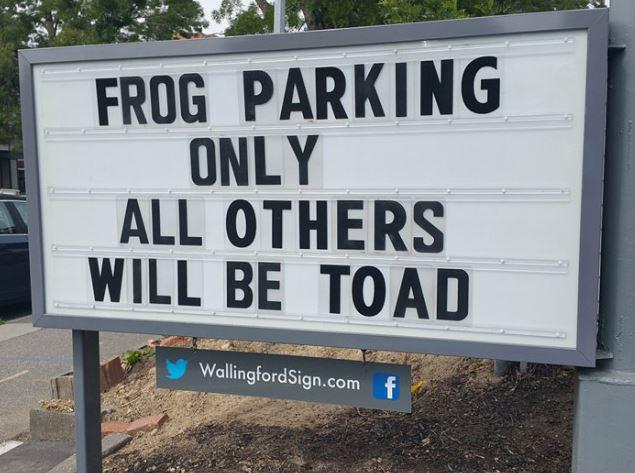 Name:  toad.JPG Views: 39 Size:  62.7 KB