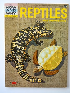 Name:  Reptiles.jpg Views: 63 Size:  66.0 KB