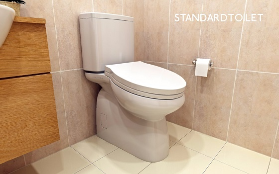 Name:  Inclined Toilet.jpg Views: 129 Size:  80.5 KB