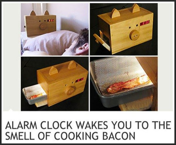 Name:  Best_Alarm_Clock_Ever.jpg Views: 237 Size:  53.6 KB