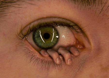 Name:  eye.jpg Views: 514 Size:  30.6 KB
