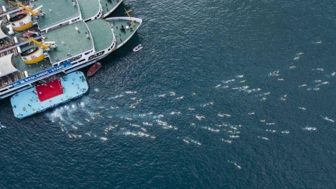 Name:  sharkbait.jpg Views: 347 Size:  53.0 KB