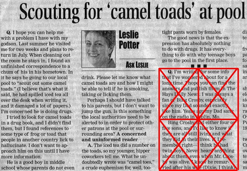 Name:  camel toads.jpg Views: 276 Size:  159.0 KB