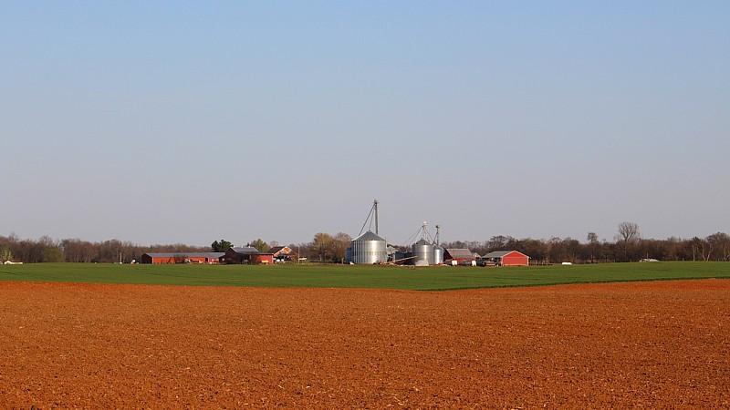 Name:  Farm.jpg Views: 58 Size:  90.0 KB