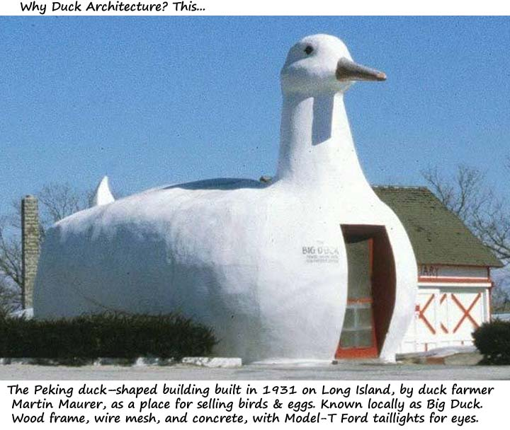 Name:  duck2.jpg