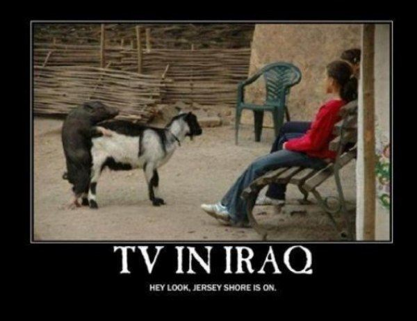 Name:  Tv_In_Iraq.jpg