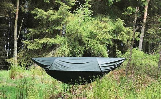 Name:  hammock.JPG Views: 125 Size:  83.0 KB