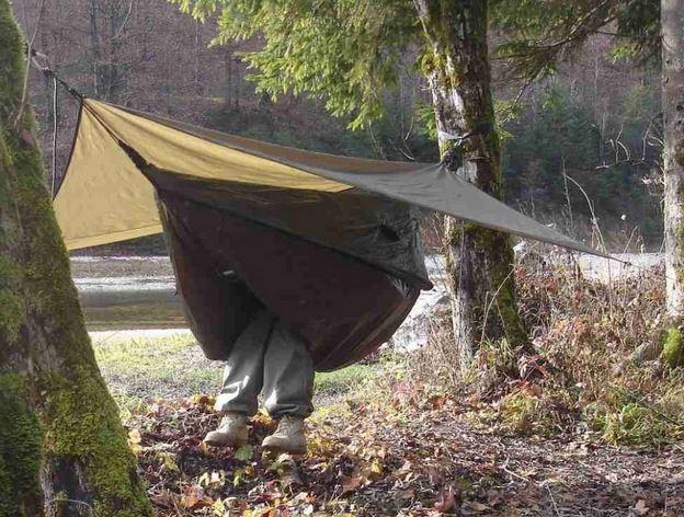 Name:  hammock1.JPG Views: 123 Size:  90.5 KB