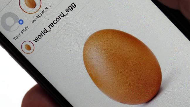 Name:  egg1.jpg Views: 44 Size:  26.8 KB