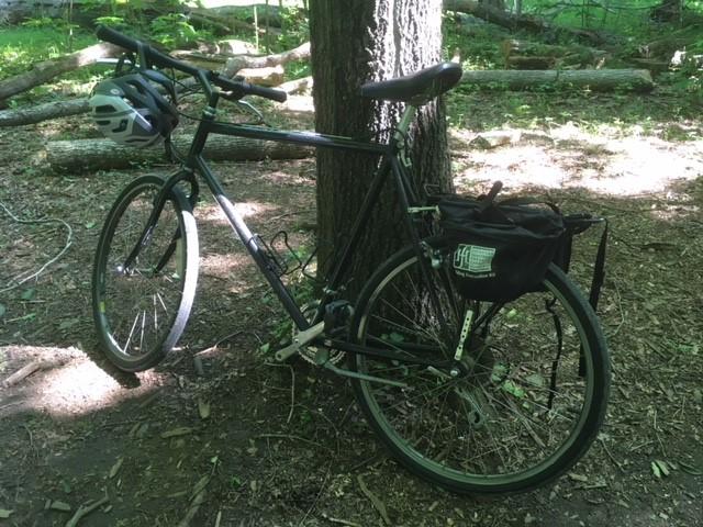Name:  marsden bike.jpg Views: 105 Size:  125.7 KB