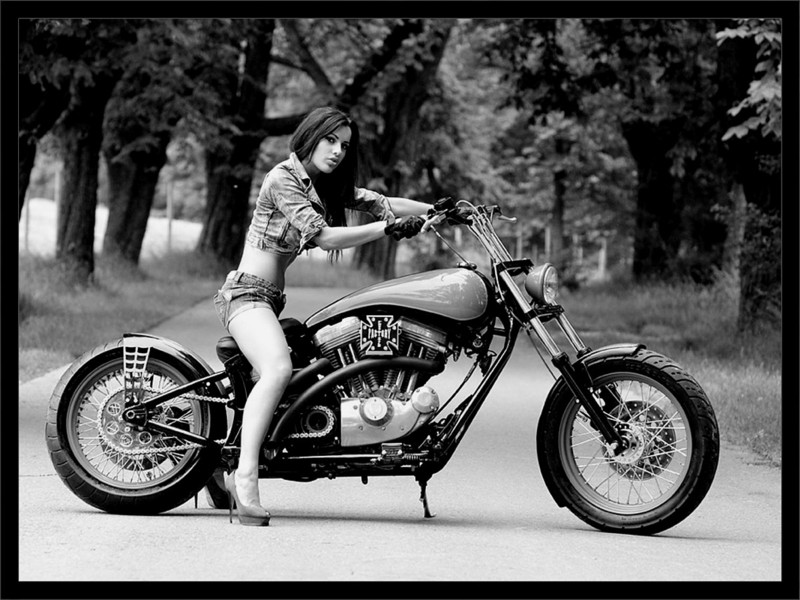 Name:  Chopper Girl 3.jpg