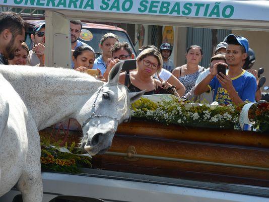 Name:  horse.JPG Views: 65 Size:  48.8 KB