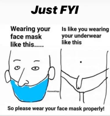 Name:  wearing-your-mask-like-this-is-like-wearing-your-underwear-like-this.jpg