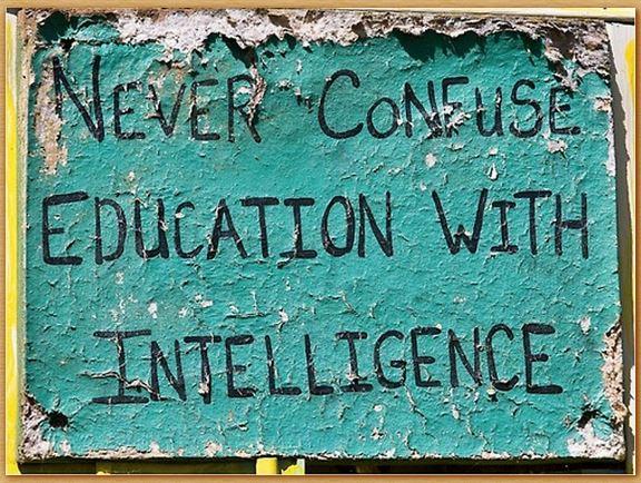Name:  educationandintelligence.jpg Views: 160 Size:  97.7 KB