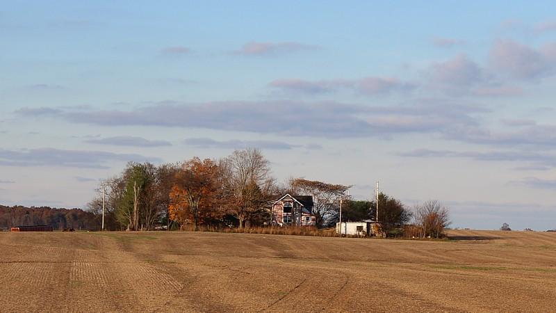 Name:  abandonedpinkhouses.jpg Views: 609 Size:  92.2 KB