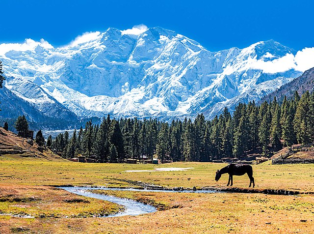 Name:  640px-Fairy_Meadows_and_the_view_of_Nanga_Parbat.jpg