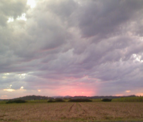 Name:  Sunset.jpg Views: 954 Size:  27.0 KB