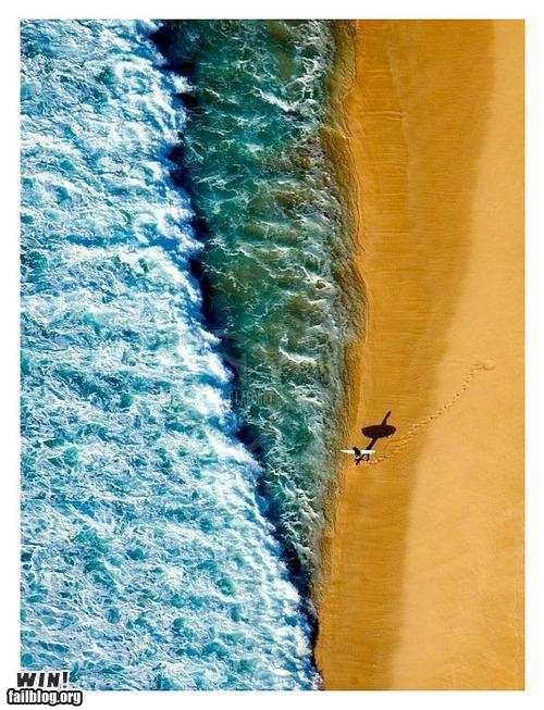 Name:  surfer.jpg Views: 542 Size:  81.5 KB