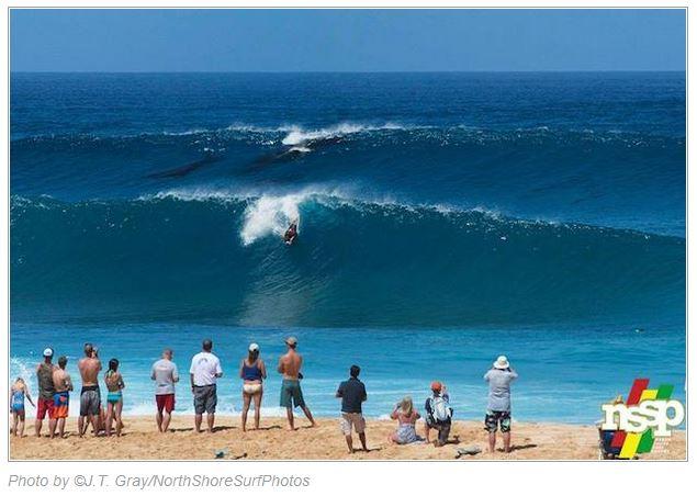Name:  surfing humpbacks.JPG Views: 271 Size:  53.8 KB