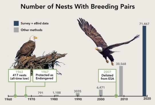 http://cellar.org/img/number-of-eagle-nests.jpg